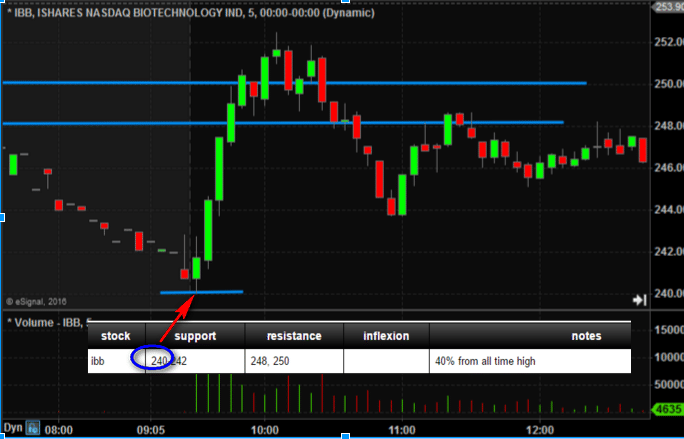 Ibb stock options
